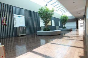 ラウンジ 明るく開放的な空間が生徒を出迎える